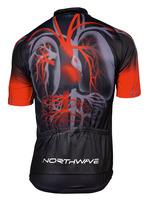 HEART B