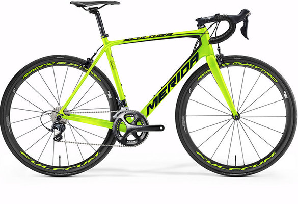 Special-ED-FLUO-GRN