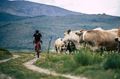 Balaton kör extrákkal: ez a Balaton Bike Derby!